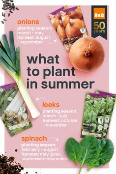 With longer days and plenty of sunshine (fingers crossed), summer is a great time to fill your garden with even more plants, fruits, and vegetables. Our quick guide tells you what veggies to plant and when. Fruit Plants, Fruit Trees, Edible Garden, Vegetable Garden, Building Raised Beds, Delicious Fruit, Fruit And Veg, Garden Inspiration, Garden Ideas