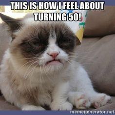"Create meme ""miss you grumpy cat meme grumpy cat happy birthday "" Meme Grumpy Cat, Grumpy Cat Images, Funny Animal Memes, Funny Cat Videos, Funny Animal Pictures, Funny Cats, Funny Animals, Cute Animals, Grumpy Kitty"