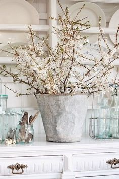 Vintage Farmhouse Decor Large Galvanized Planter with White Blooms Surrounded by Transparent Glass Containers - 30 Farmhouse Tabletop Arrangement Centerpiece ideas and inspiration for your next farmhouse style makeover. Shabby Chic Kitchen, Shabby Chic Homes, Shabby Chic Decor, Rustic Decor, Farmhouse Tabletop, Farmhouse Chic, Farmhouse Design, White Farmhouse, Vibeke Design