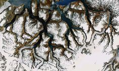 The Natural Fractals of Google Earth | Atlas Obscura