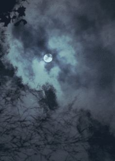 """""""Tell me the story about how the Sun loved the Moon so much he died every night to let her breathe."""""""