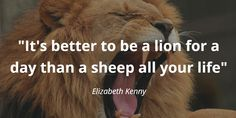 Ready For Some ✨ Remember the wise words of Elizabeth Kenny and channel your inner lion 💪 Elizabeth Kenny, Lucky Quotes, Wise Words, Motivational Quotes, Lion, Channel, Wisdom, Animals, Leo