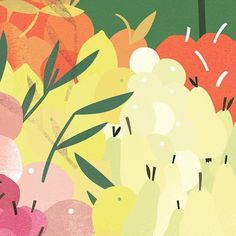 Sunny fruit. #market #farmersmarket #healthyfood #illustration #foodillustration #fruity #illustrator #wip #lottedirks