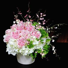 季節の花 バラ 「ピンクローズ・ブロッサム」