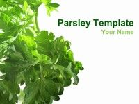 Parsley PowerPoint Template thumbnail