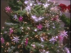 Watch Martha Stewart's Paper Tree Ornaments and Christmas Wreaths Video. Get more step-by-step instructions and how to's from Martha Stewart.