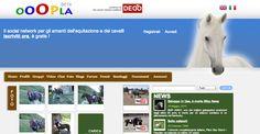 Ooopla | social network per amanti dell'equitazione