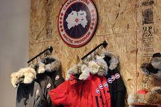 canada goose store locator