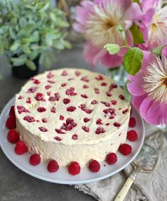 Vanilla Cake, Cheesecake, Food And Drink, Snacks, Cookies, Baking, Sweet, Party, Desserts
