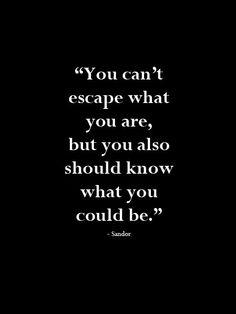 Sandor's words of wisdom~ (Lorien Legacies)