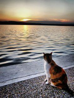 Klimno, Croatia. Photo: Durdica Celikovic