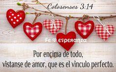 Por encima de todo, vístanse de amor, que es el vínculo perfecto. Colosenses 3:14