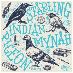 City Birds by MUTI, via Behance