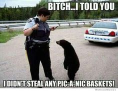 bitch-i-told-you-i-didnt-steal-any-pic-a-nic-baskets