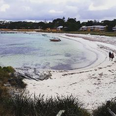 Yeah Rottnest You're Alright  #myrotto #rottnestisland #perth #weekend #beach #nature #australia #scenery #ocean #WA by melza31 http://ift.tt/1L5GqLp