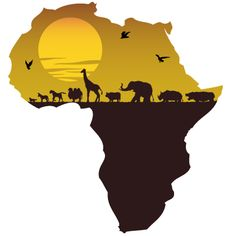 GCC countries eyes African markets - Trade and Export Middle East