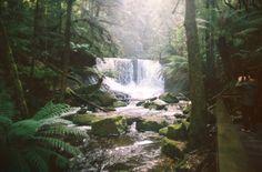 Английская студентка Nicola Abraham отправилась в свое первое большое путешествие в Австралию и внезапно для себя самой нашла там родную Англию. My Photos, Waterfall, Explore, Places, Nature, Outdoor, Outdoors, Naturaleza, Exploring