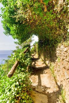 Hiking Cinque Terre – A Photo Guide Italy Map, Italy Travel, The Beautiful Country, Beautiful Places, Wonderful Places, Malta, Cinque Terre Italy, Rando, Italy Holidays