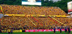 BARCELONA SPORTING CLUB   El ídolo del Ecuador - Sitio Oficial