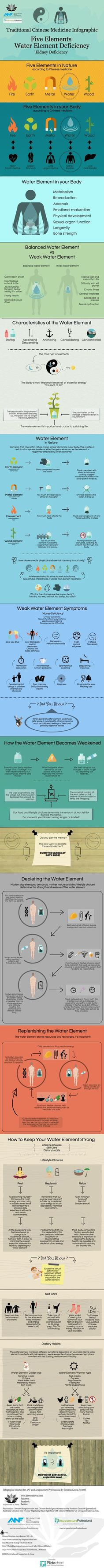 Water weakness (Chinese Medicine Infographic) | Piktochart Infographic Editor