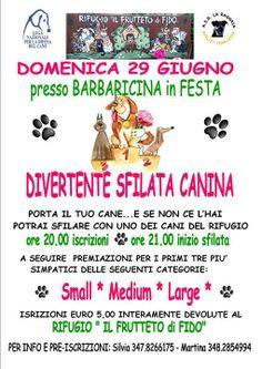 """29/6 Sfilata canina a favore del Rifugio """"Il Frutteto di Fido"""" #LegadelCane S. Giuliano Terme #Pisa"""