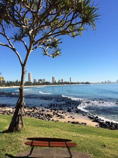 The best view in the house, Burleigh Point. http://walkingthegoldcoast.com/
