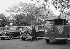 1952 Dodge Kingsway Station Wagon, 1952 (of vroeg '53) Standard Vanguard Phase 1A, 1955 VW T1, Curaçao 1955