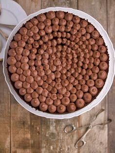 Kakaový dort s krémem z mascarpone a čokoládové ganache Dog Food Recipes, Mascarpone, Dog Recipes
