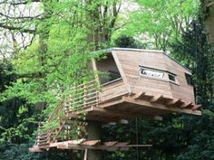 Great Tree House Ideas | Awesome Great Inspiring Adventurer Tree House 2 Pictures
