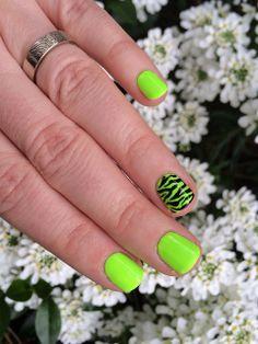 Zebra Print Zoo Nails: American Apparel Neon Green + OPI Black Onyx