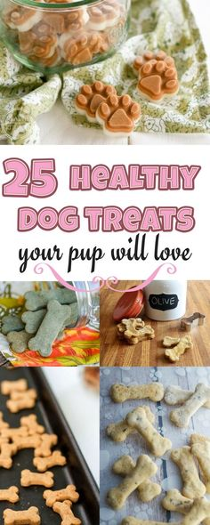 25 Easy & Healthy Dog Treats Recipes Your Dog Will Love It!  DIY and save money   Natural  & fresh  dog food for happy life  -- Repin to your own inspiration board --