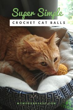 Super Simple Crochet Cat Balls 2019 A free crochet pattern for super simple cat ball toys! The post Super Simple Crochet Cat Balls 2019 appeared first on Yarn ideas. Crochet Cat Toys, Crochet Hood, Crochet Ball, Crochet Unicorn, Crochet Amigurumi Free Patterns, Crochet Animals, Diy Crochet, Simple Crochet, Irish Crochet
