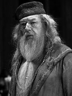 Professor Dumbledore, a good reminder that it is very possible and quite fitting to be both quirky and wise.