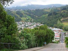 Dunedin New Zealand | World's Steepest Street, Dunedin, New Zealand