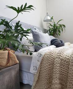 #casa #apartamento #minhacasa #quarto #quartodecasal #decoração #decor #decoracao #plantas #plants #urbanjunglebloggers #urbangarden #bedroomdecor #bedroom #roomdecor #interiordecor #instadecor #homedecor #lovedecor #myhome #homesweethome #interiordesign #lardocelar #diariodedecoracao #designdeinteriores #instahome #diy #facavocemesmo #façavocêmesmo