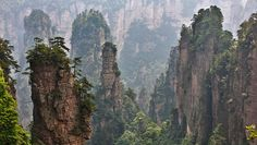 Zhangjiajie National Forest Park is one of the several parks located within the Wulingyuan scenic Area in Hunan Province, China. It is famous for its majestic pillar-like geographic formations which dot the entire park. The pillars are said to be an inspiration for the floating Hallelujah Mountains seen in the movie 'Avatar'.