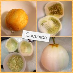 Lemon cucumber or cucumon?!!! Thank you goes to the garden guru coworker who brought one in to try!! Tastes like a cucumber. Saving the seeds to try.