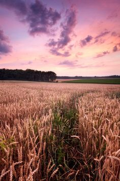 Landscape Photo 2 in Outstanding Landscape Photos by Photographer Michael Breitung