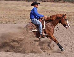 Now there is a Reining Horse!    Boonlight  N Diamonds    Diamond MR Ranch