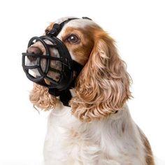Baskerville Ultra Adjustable Dog Muzzle Sizes 1 Basket Style Training >>> Startling review available here  : Dog muzzle