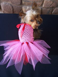 Valentine Dog TuTu Dress for toy breeds in Red and by Frillypaws, $23.00