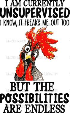 Currently Unsupervised - chicken - sublimation transfer ready to press Chicken Signs, Chicken Humor, Chicken Art, Chicken Quotes, Funny Chicken Memes, Chicken Painting, Funny Quotes, Funny Memes, Funny Sarcasm