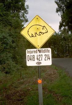 Australie http://www.baravoyages.com
