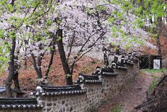 Uam Historic Park D Uam Historic Park Daejeon South Korea Beautiful World, Beautiful Places, Beautiful Pictures, Beautiful Scenery, South Korea Travel, North Korea, South Korea Photography, Living In Korea, Korean Peninsula