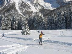 Cross-country skiing in Madonna di Campiglio