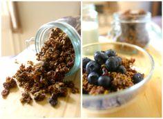 best ever paleo granola (gluten-free, grain-free)