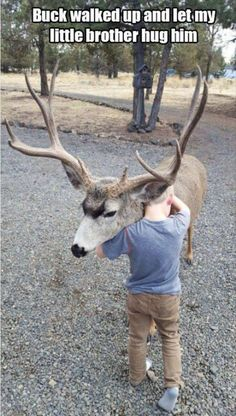 This buck walked right up to us and let my little brother hug him - Daily LOL Pics Big Deer, Funny Animals With Captions, Cute Raccoon, Mule Deer, Sleepy Cat, What A Wonderful World, Cuddling, Hug, Cute Animals