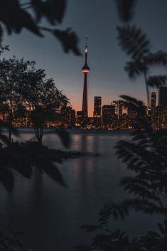 Take Photos Sell them and Earn Money - Photography Jobs Online Toronto Photography, City Photography, Landscape Photography, Nature Photography, Cityscape Photography, Torre Cn, Wallpaper Toronto, City Wallpaper, Nature Wallpaper