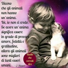 Love Pet, I Love Dogs, Dog Friends, Best Friends, Verona, Animals And Pets, Cute Animals, Dances With Wolves, Best Teacher