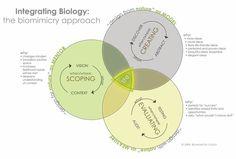 metodo biomimicry